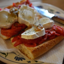 Roasted peppers, goat cheese, caramelized onion on hard bread.